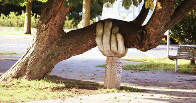 Kultur des Mitgefühls und des Gebens